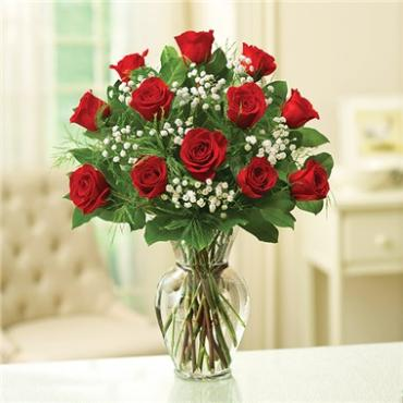 1 DOZEN RED ROSE ELEGANCE PREMIUM