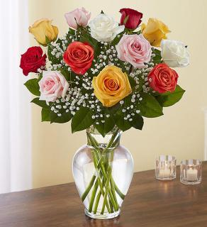 Rose Elegance™ Premium Long Stem Assorted Roses
