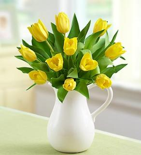 Yellow Tulips in Pitcher