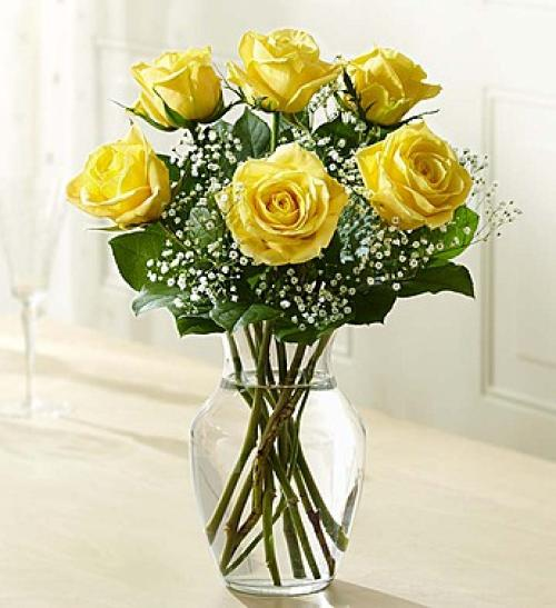 Love\'s Embrace Yellow Roses