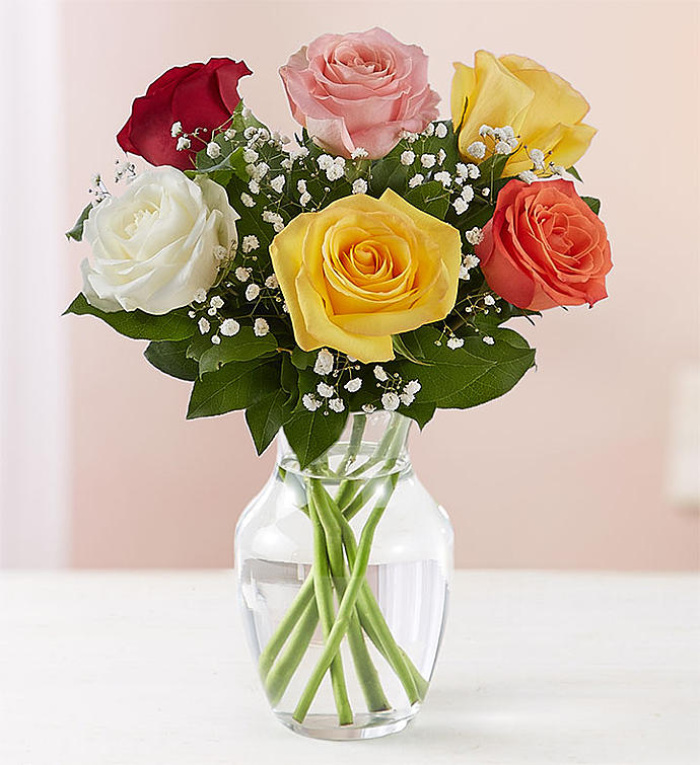 Love\'s Embrace Assorted Roses