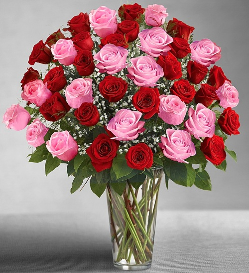 Ultimate Elegance Long Stem Pink & Red Roses