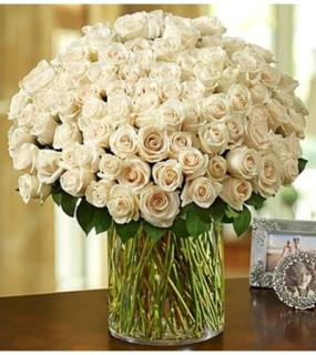 100 PREMIUM WHITE ROSES IN THE VASE